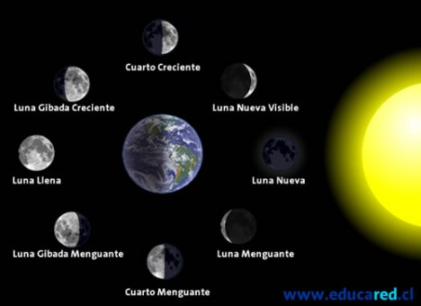 Fases lunares