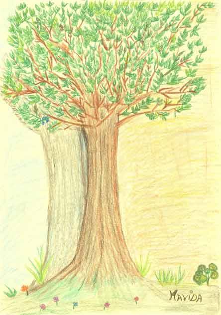 el árbol de mi yo de Mavida