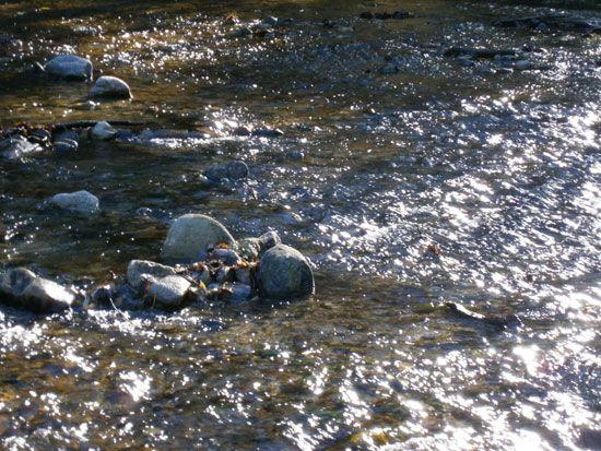 rio-rocas-segovia