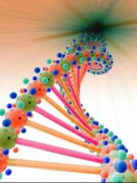 numerologia-ADN