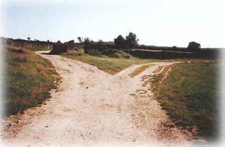 camino_cruce2